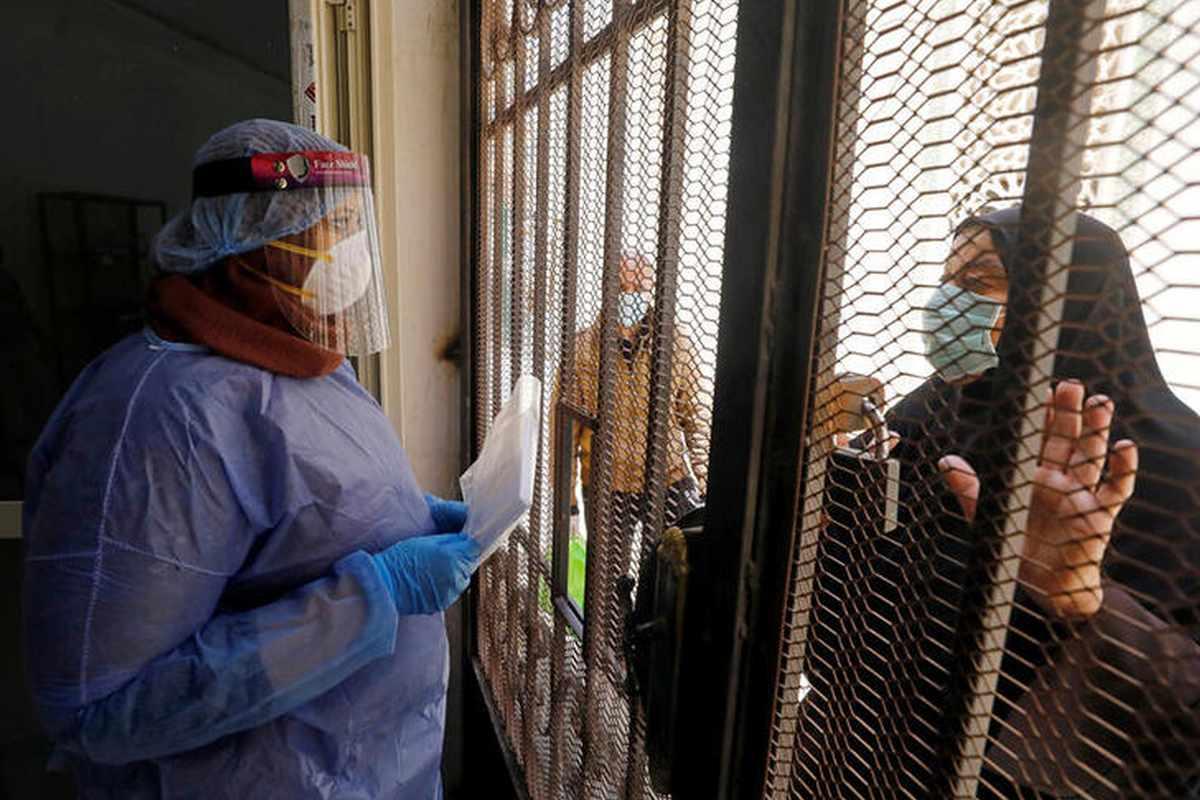 egypt plasma bblack donations patients