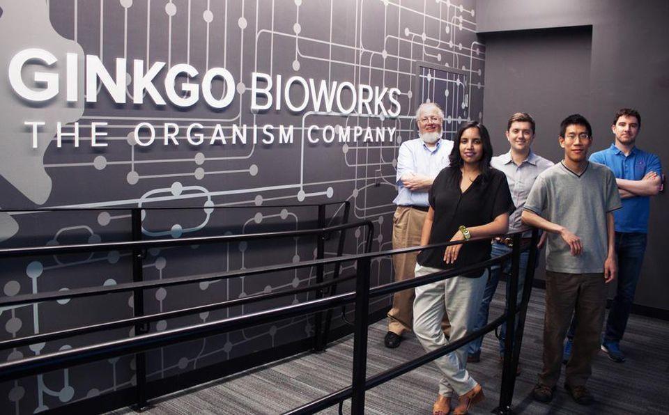 biology ginkgo bioworks foundation bioeconomy