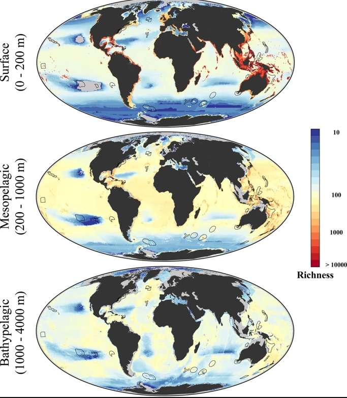 times oceans current study bclimate